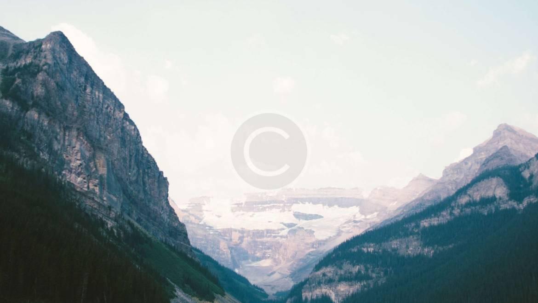 Wonderful Images of Peaceful Stillness